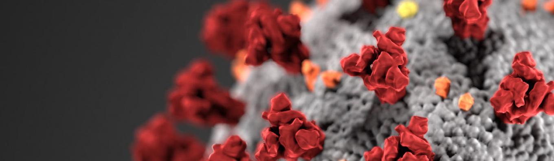 coronavirus_header.jpg