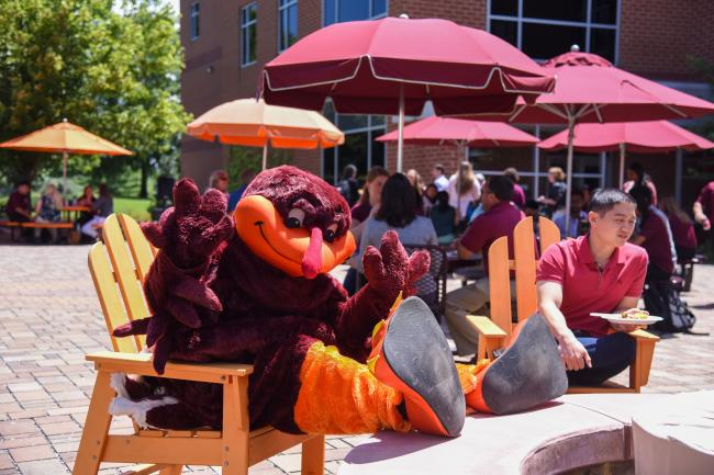 Virginia Tech Hokie mascot poses in a chair outside of the VCOM-Virginia building.